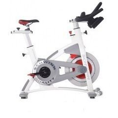 Велотренажер Schwinn AC Performance Plus 100178
