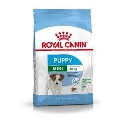 Royal Canin Mini Puppy (Junior) 8 кг