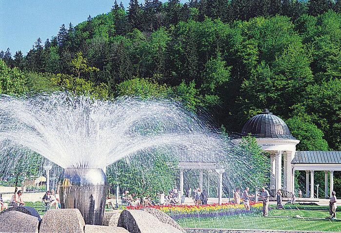 Отдых и оздоровление за рубежом ЦентрКурорт Трускавец - фото 4