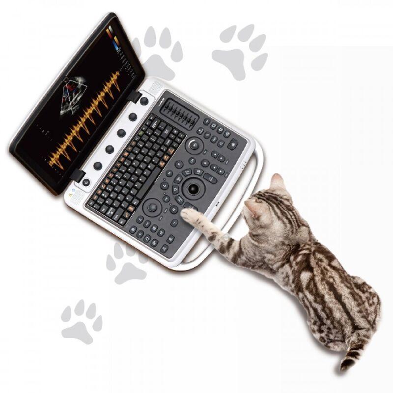 Медицинское оборудование Chison Ультразвуковой ветеринарный аппарат Sonobook 9 - фото 1