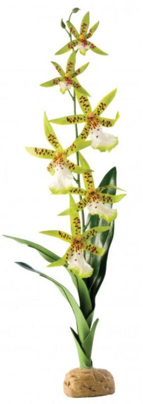 Hagen Орхидея, 29x9x5 cм - фото 1