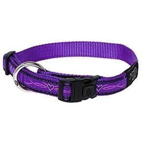 Ошейник и поводок Rogz Ошейник Fancy Dress Purple Chrome М (26-40 см)*16 мм - фото 1