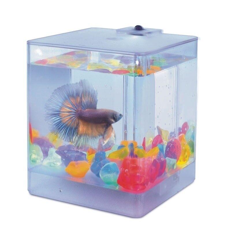 AA-Aquariums Аквариум Aqua Box Betta - фото 1