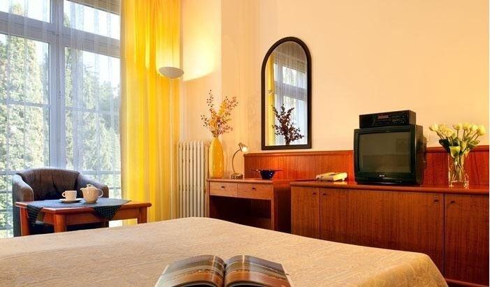 Отдых и оздоровление за рубежом Ibookmed Курорт Слиач, отель Palace 3* - фото 3