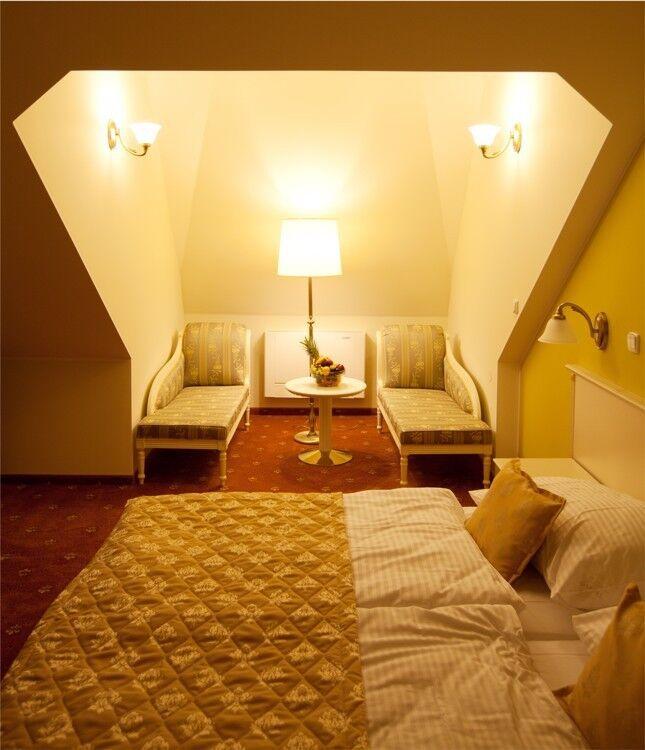 Отдых и оздоровление за рубежом Ibookmed Курорт Карловы Вары Отель Čajkovskij Palace 4* - фото 4