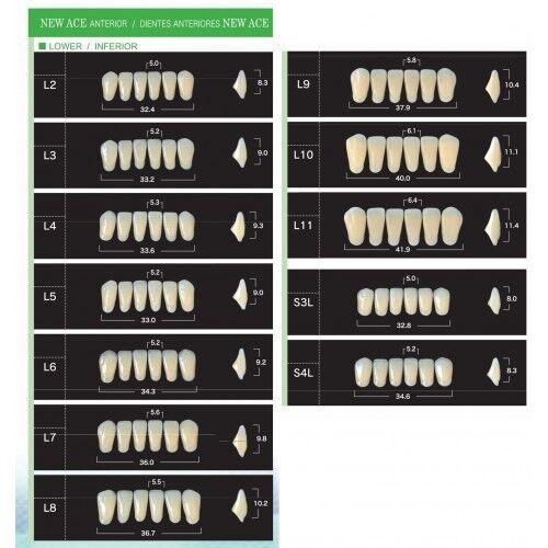 Стоматологическое оборудование Yamahachi Dental MFG Co. Акриловые зубы в боксах New Ace/New Million - 20 полных гарнитуров в боксах. - фото 1