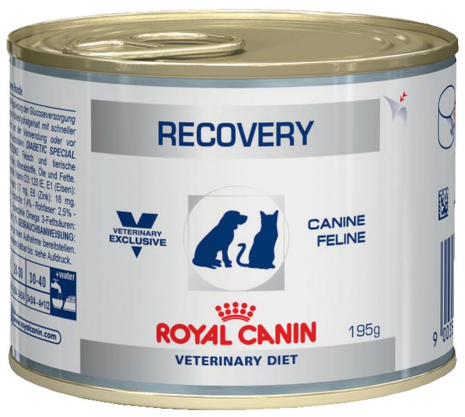 Royal Canin Recovery 195гр. - фото 1