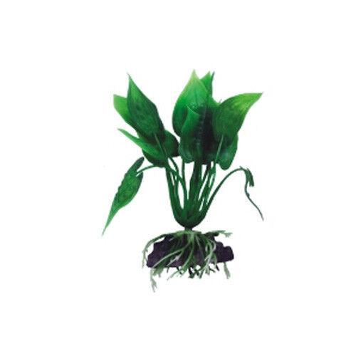 Boyu Криптокорина сердцелистная зелёная 30.5 см АР-073 - фото 1
