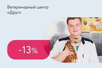Скидка 13% на кастрацию котов